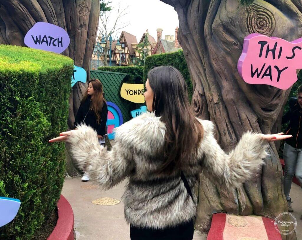 Atrakcje Disneylandu