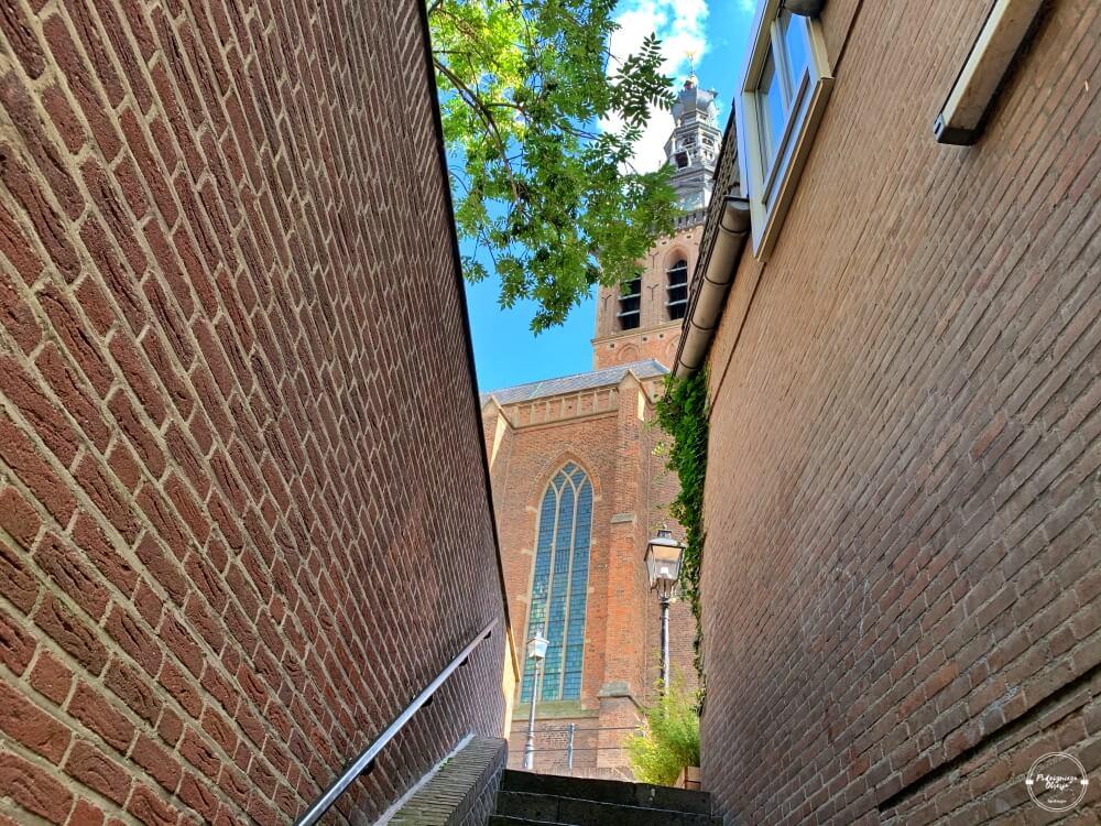 Kościół św. Szczepana w Nijmegen