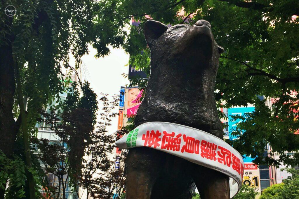 Pomnink psa Hachico w Tokio