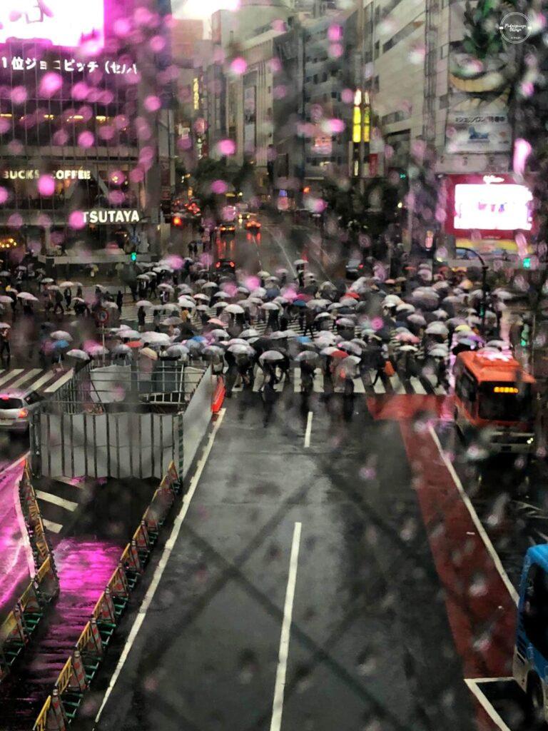 Wielkie skrzyżowanie w Tokio