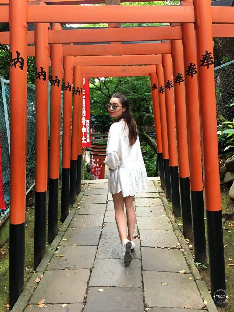 Bramy Torii w Ueno Parku